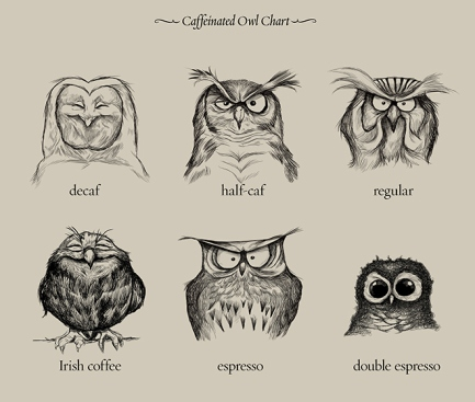 caffeineowl